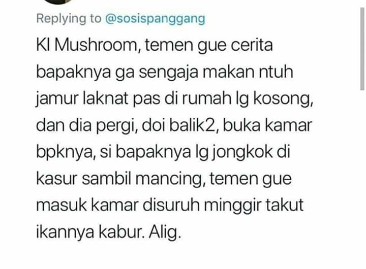 Cuitan Kocak Tentang Magic Mushroom, Jamur Setara Narkotika.