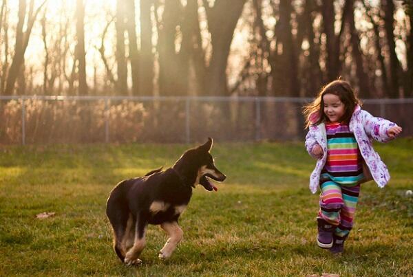 Pentingnya Anak Melihara Binatang