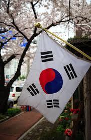 Taekwondo, Beladiri Tradisional yang Korea Banget !