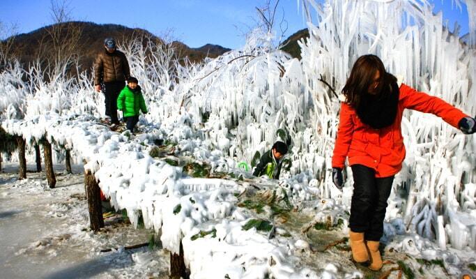 Seperti Inilah Pengalaman Serunya Bermain Salju Di Gunung Taebaeksan Korea !