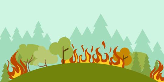 Amankan Pembakar Hutan, TNI dan Polri Gencarkan Patroli Udara - Laut