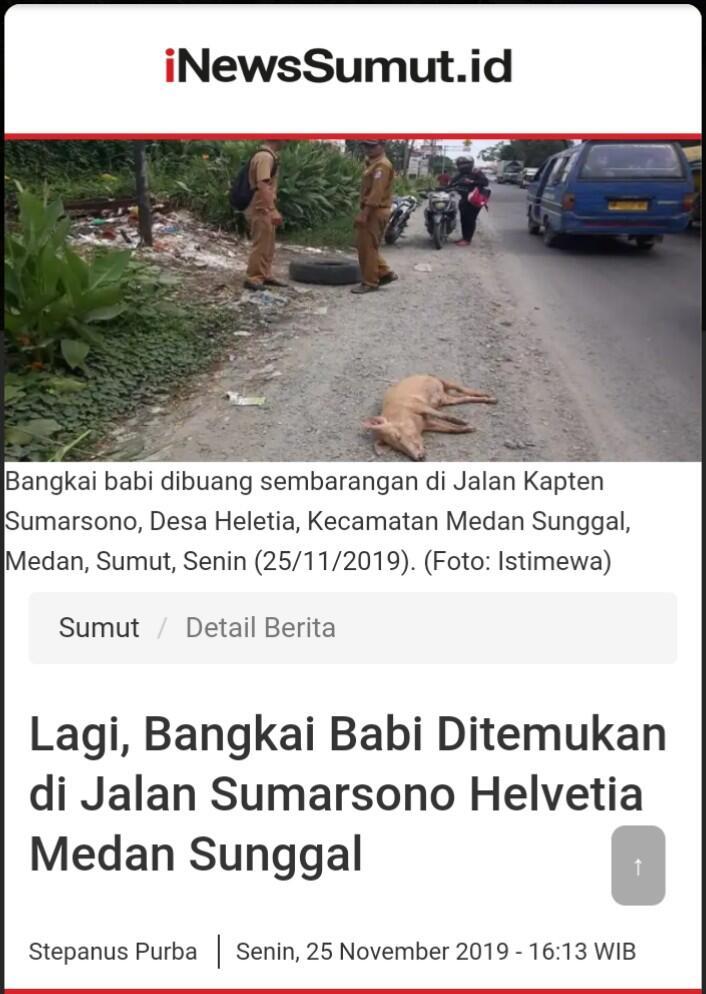 Pilih Mana? Save Harimau Sumatera atau Save Babi?