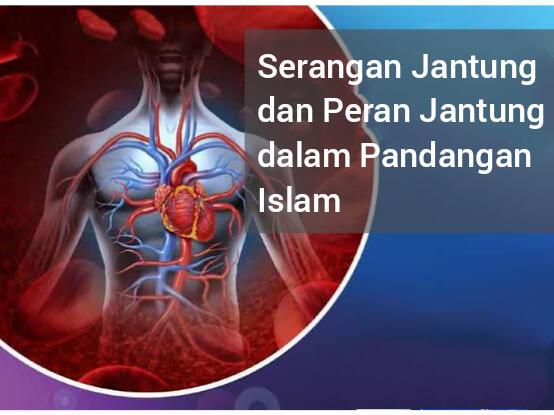 Islam Dalam Pandangannya Terhadap Serangan Jantung dan Peran Organ Jantung