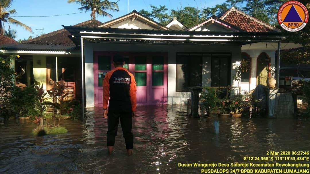 Sejumlah Desa Di Lumajang Banjir, Warga Berusaha Selamatkan Hewan Ternak!