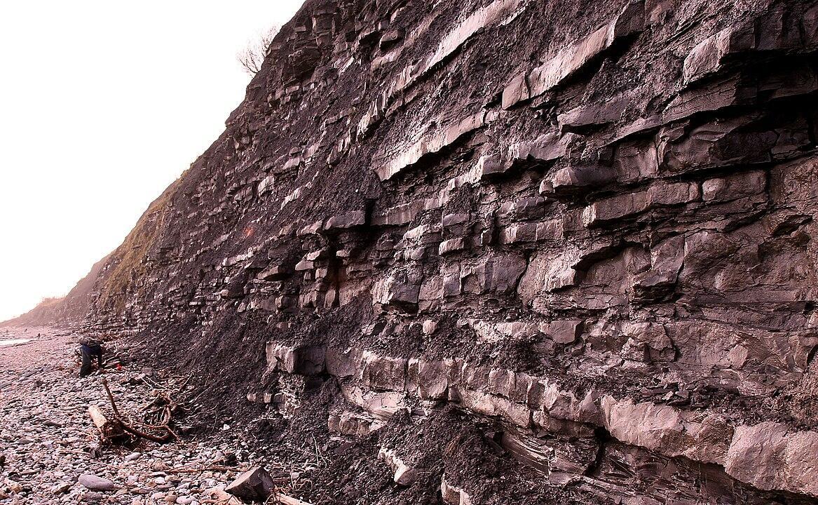 Ibu Paleontologi Dunia Tanpa Tanda Jasa - Mary Anning