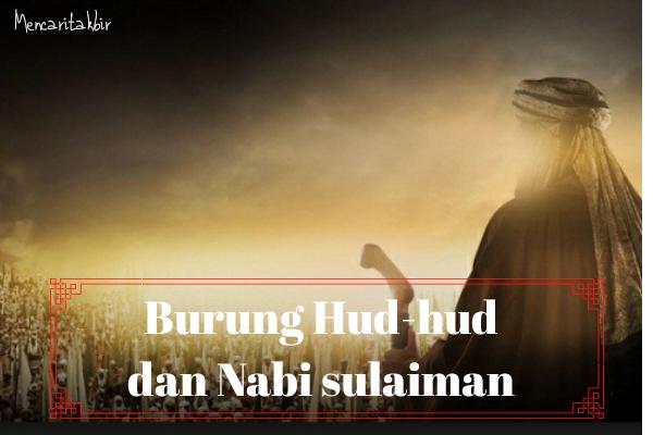 Kisah Burung Hud-hud Dan Nabi Sulaiman