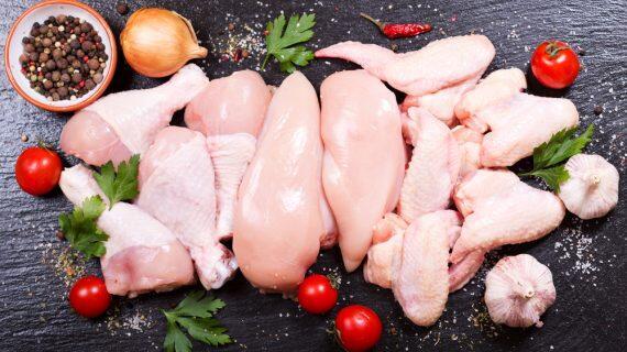 Perbedaan Kadar Nutrisi dan Kalori Daging Ayam Bagian Paha dan Dada