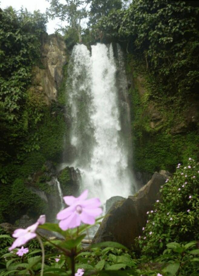 [ COC Regional : Lokasi Wisata ] Air Terjun Curug Embun Kabupaten Kepahyang,Bengkulu