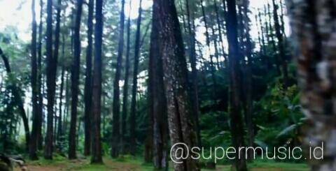 [COC Regional: Lokasi Wisata] Seloondo Destinasi Wisata di Kota Ngawi