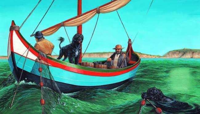 Mengenal Water Portuguese Dog , Anjing lucu kesayangan Obama