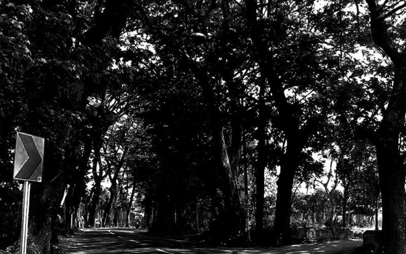 Sepanjang Jalan Kuburan Manisan di Desa Jurang