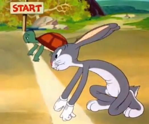 Ternyata Kura-kura Memang Bisa Lari Lebih Cepat dari Kelinci, Lo!