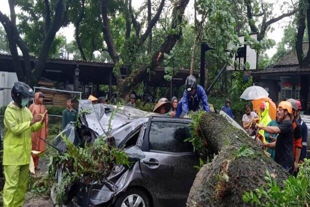 Hujan Deras Landa Sleman, Talud Ambrol hingga Pohon Timpa Mobil