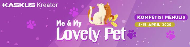Kucing Kesayangan Penghilang Stress dan Pelipur Kesedihanku