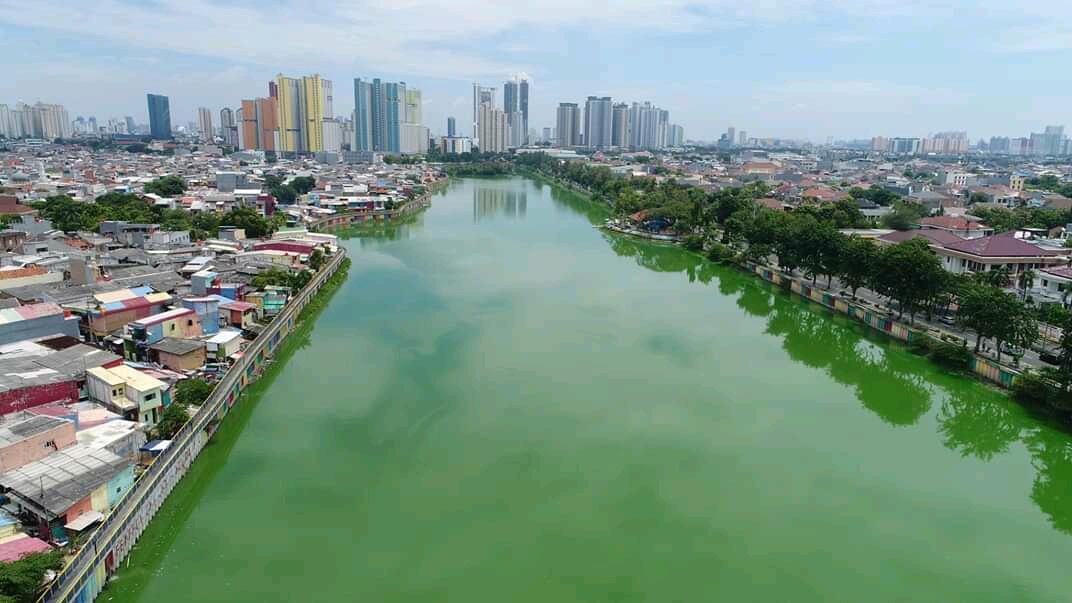 5 Hari Masa PSBB, Sungai Sunter Jakarta Tampak Begitu Tenang