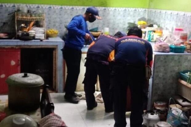 Nongkrong di Dapur Warga, Ular King Cobra 2 Meter Berhasil Ditangkap