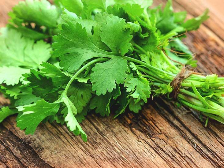 10 Dedaunan Pelengkap Masakan, Menambah Aroma Kuat dan Cita Rasa yang Lebih Nendang
