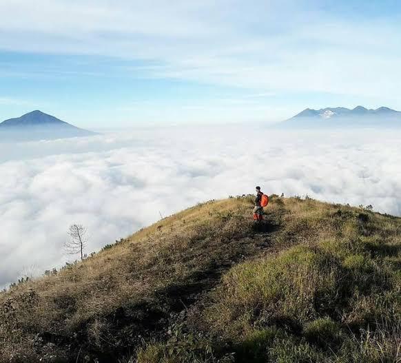 HORROR [Real Story] Pendakian Berujung Kematian