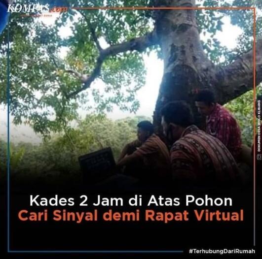 Kades Ini Panjat Pohon 2 Jam Cari Sinyal Demi Rapat Virtual