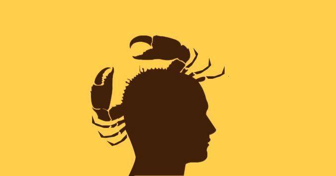 Crab Mentality: Kalau Ane Gak Bisa Mendapatkannya, Orang Lain Juga Gak Boleh!