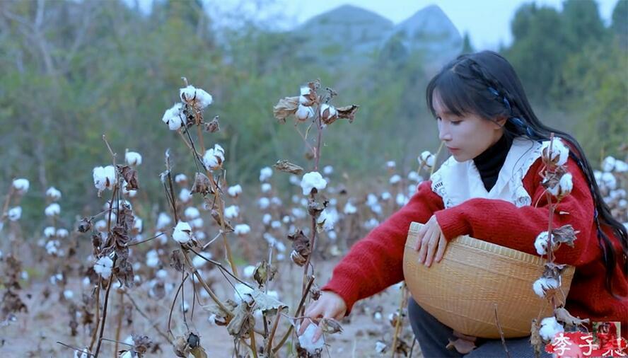 Li Ziqi, YouTuber China Sulap Kehidupan Desa Jadi Negeri Dongeng