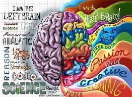 5 Hal yang Dapat Mempertajam Otak Kanan Kalian di Tengah Pandemi COVID-19