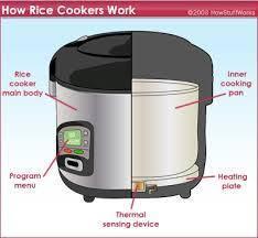 Bagaimana Rice Cooker Tahu Kalau Nasi Sudah Matang? Berikut Penjelasannya