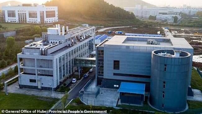 Bosnya Bos Lab Wuhan yang Kontroversial Akhirnya Bicara