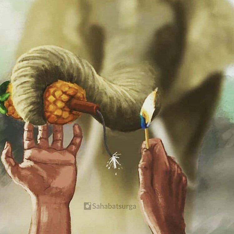 KEJAM, Gajah ini Mati dengan bayi didalam kandungannya