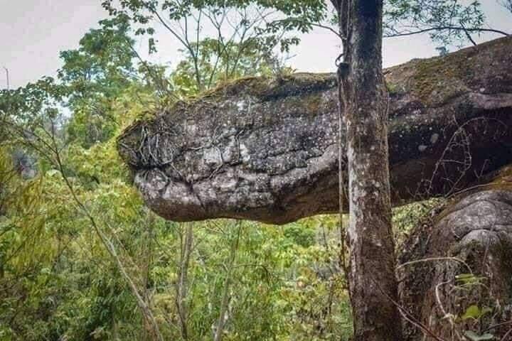 Netizen Heboh 'ULAR RAKSASA' Yang Konon Dikutuk Jadi Batu Di Naka Cave Thailand