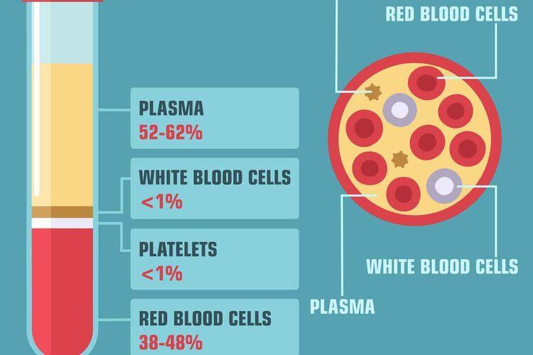 Terapi Plasma Konvalesen Sebagai Pengobatan Pasien Covid-19