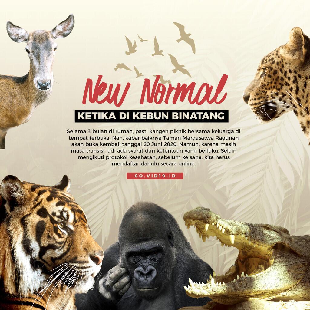 Protokol New Normal di Kebun Binatang
