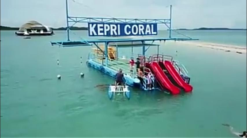 [COC Reg. Batam] Tetap Kering! Nikmati Keindahan Bawah Laut di KEPRI CORAL Batam