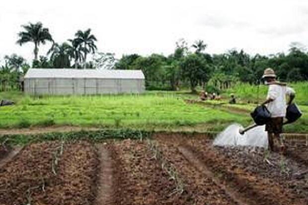 Industri di Jatim Didominasi Sektor Agro