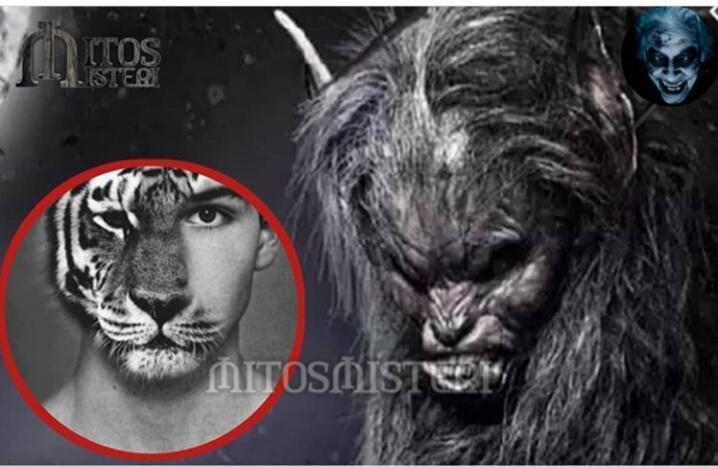 [COC_Jambi] Cindaku Dari Kelinci Yang Mirip Dengan Werewolf, Kepoin Yuks! Masuk Dah