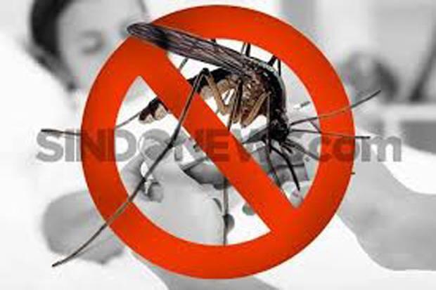Ahli Infeksi Ingatkan Tujuh Tanda Bahaya DBD saat Pandemi Corona