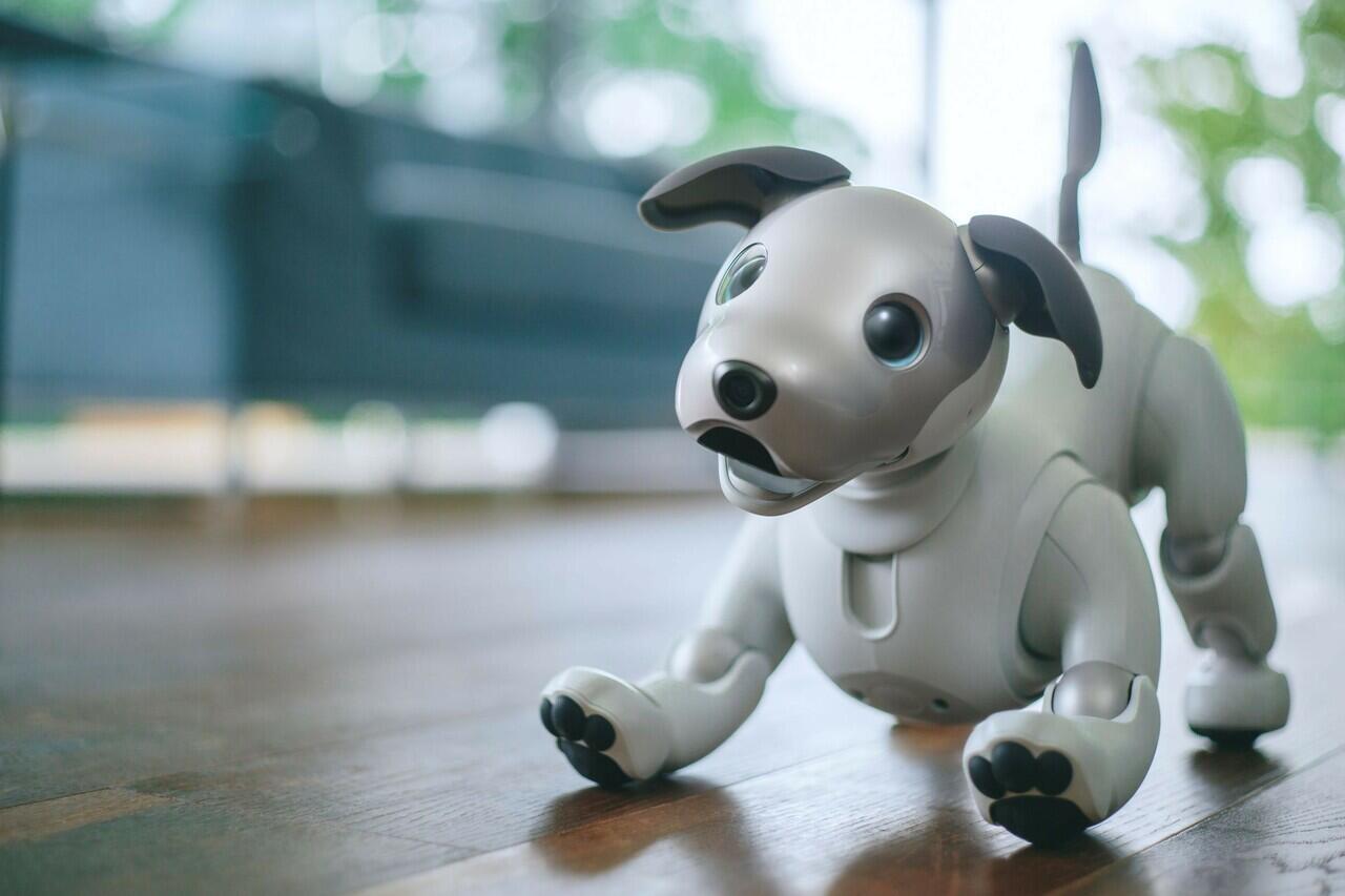 Sony Punya Robot yang Bisa Sambut Tuannya di Depan Pintu