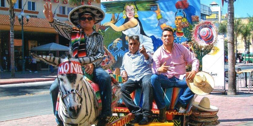 """Zonkey's, Hewan """"JADI-JADIAN"""" Yang Menjadi Tradisi Unik Di Kota Tijuana !"""