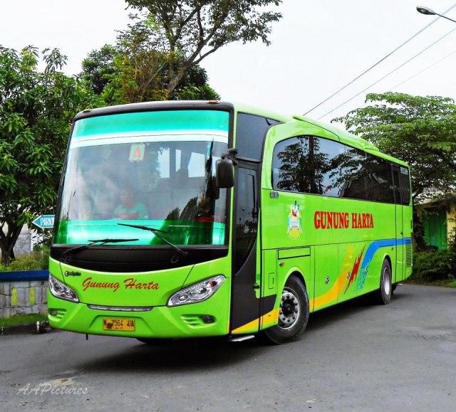 Golden Dragon, Bus 'Made In China' Dengan Cita Rasa Eropa