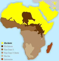 Keluarga Bahasa Afro Asiatik