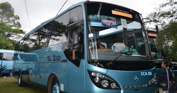 [Coc Bisnis] Tak Ada Client Yang Menyewa Bus, Saya Kerja Lagi Sambil Tetap Kuliah