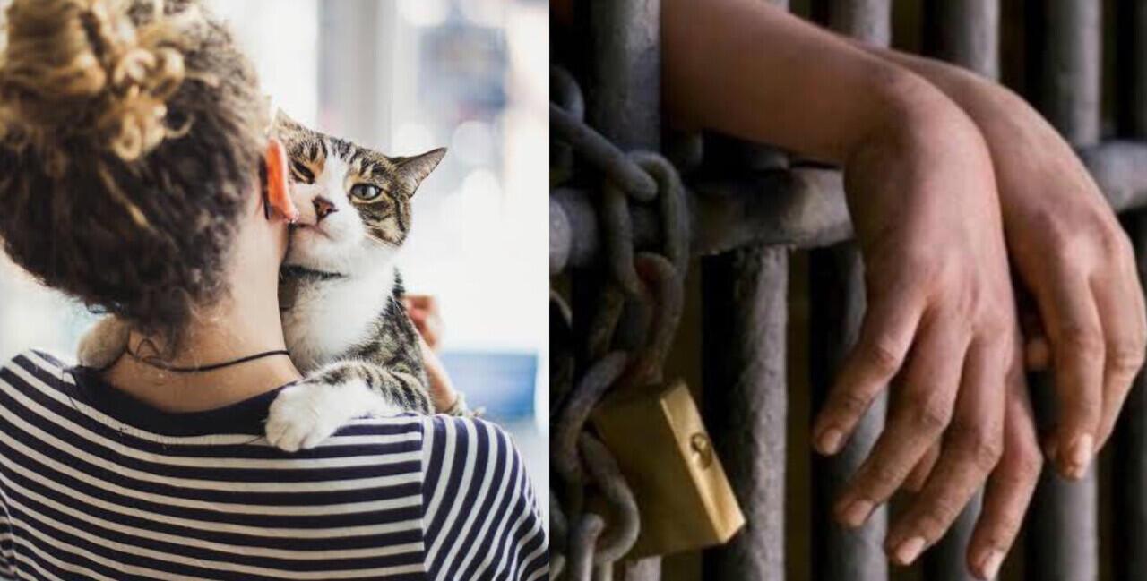 Miris! Alih-Alih Menolong Kucing, Ibu Ini Malah Di Jatuhi Hukuman Penjara