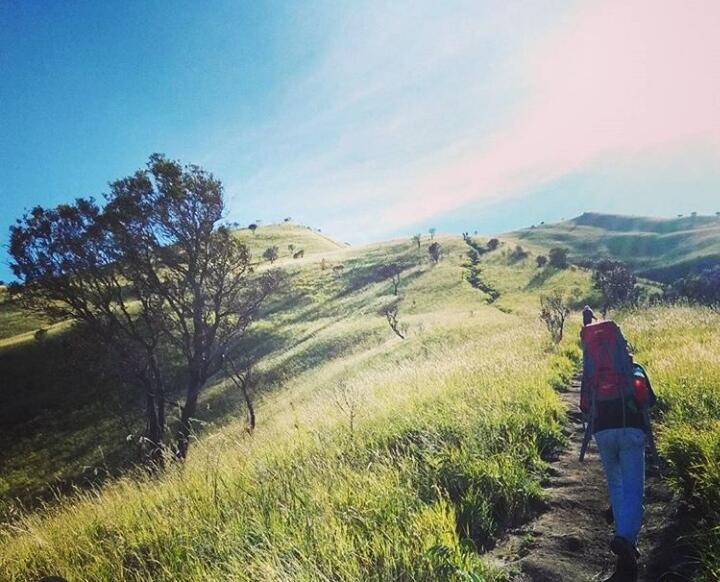 Mendaki Untuk Pulang