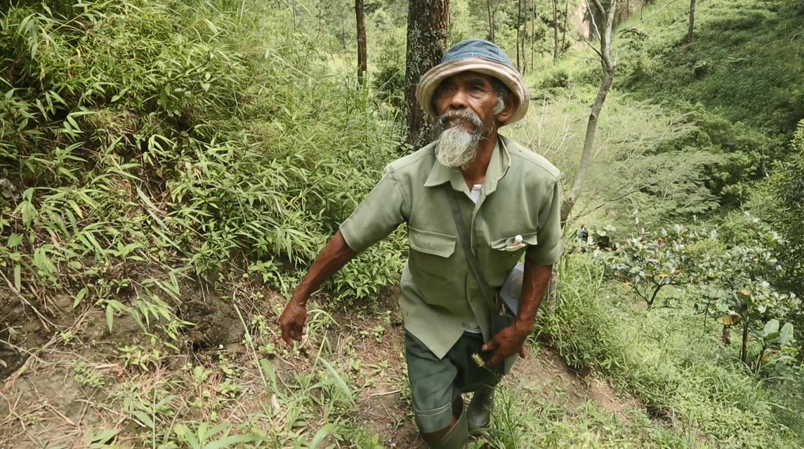 Mbah Sadiman, Sosok Pahlawan Penanam Pohon Di Desa Geneng!