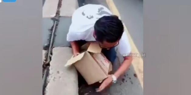 Video Pria Baik Selamatkan Kucing Tertabrak Kendaraan di Jalanan, Bikin Netizen Haru!