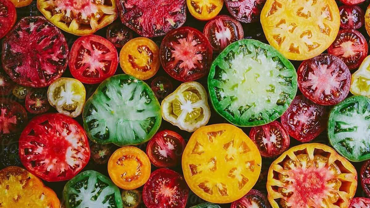 Pertanyaan #PentingNggakPenting: Tomat Disimpan di Kulkas atau di Lemari Biasa, ya?