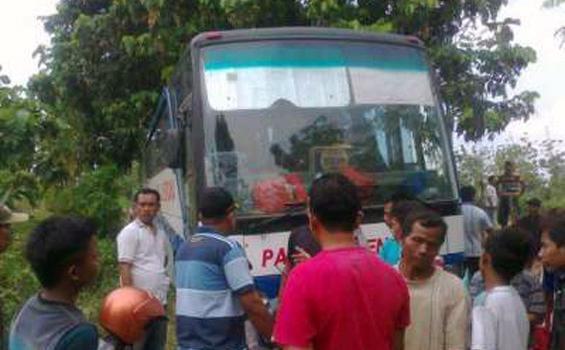 Pahala Kencana, Barometer Bus Malam Mewah Dan Nyaman Dari Kota Kretek