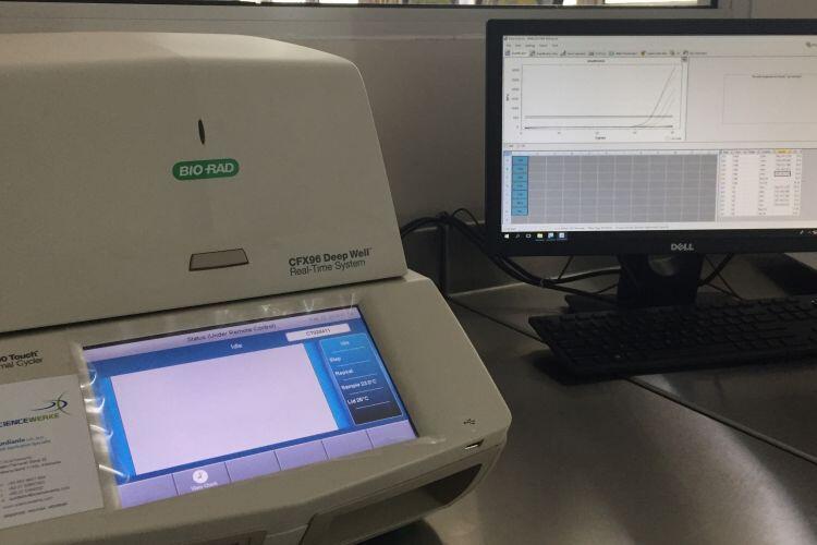 Mau Cek DNA Sekarang Ga Perlu Ke Lab Bisa Pakai HP Doank Gan Sis