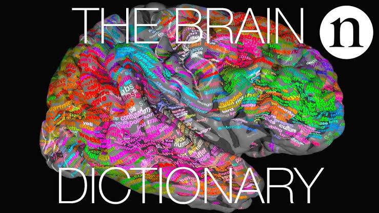 Pola Pikir Nggak Selalu Sama, Ini 5 Perbedaan Otak Agan dan Sista