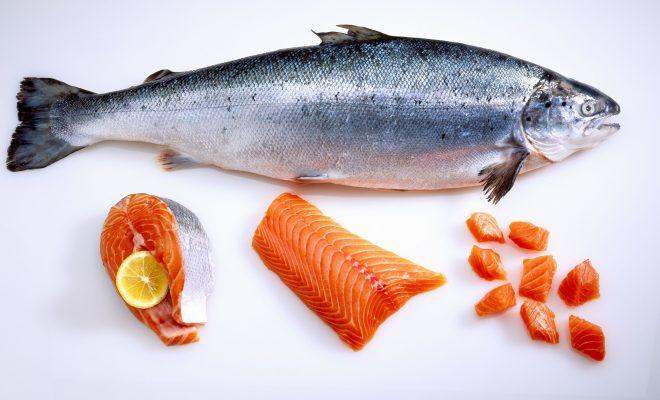 5 Makanan mengandung lemak tidak bikin gemuk, Apakah Lemak Bisa Bantu Diet?